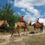 Деца яздят коне
