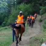 Разходки с коне