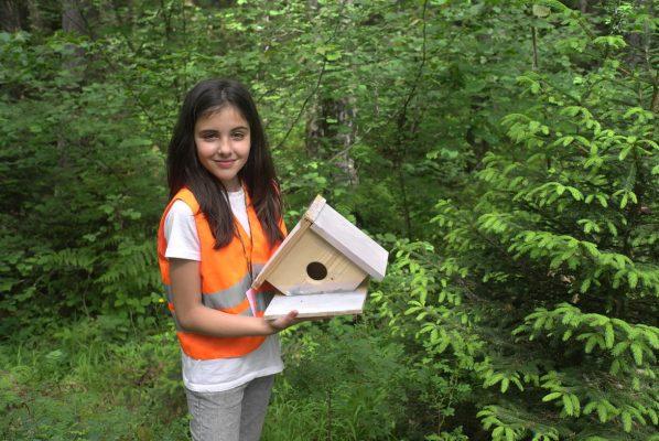 Дете направило къща за птици | Lucky Kids