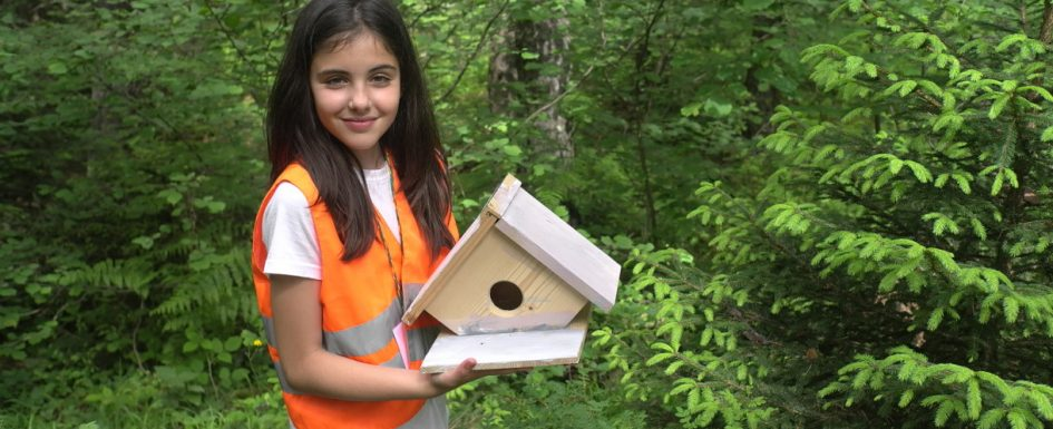 The child made a house for birds | Lucky Kids