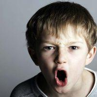 Problem behavior and aggression in children