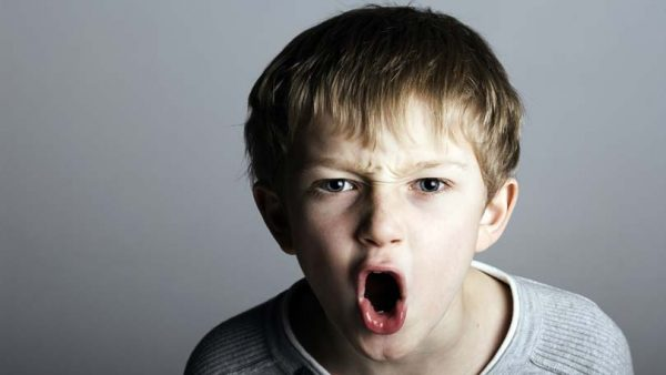 Problem behavior and aggression in children